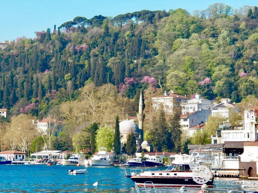 گرانترین محله های استانبول 4