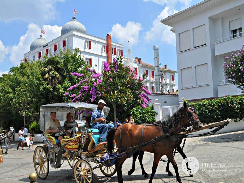 بیوک آدا جزیره بدون ماشین ترکیه 12