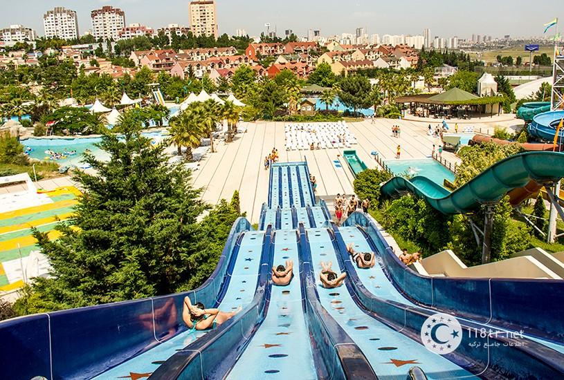 پارک آبی آکوا کلاب دلفین استانبول 2