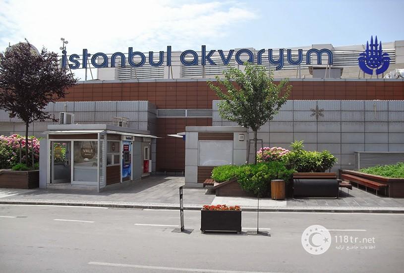 آکواریوم استانبول 8