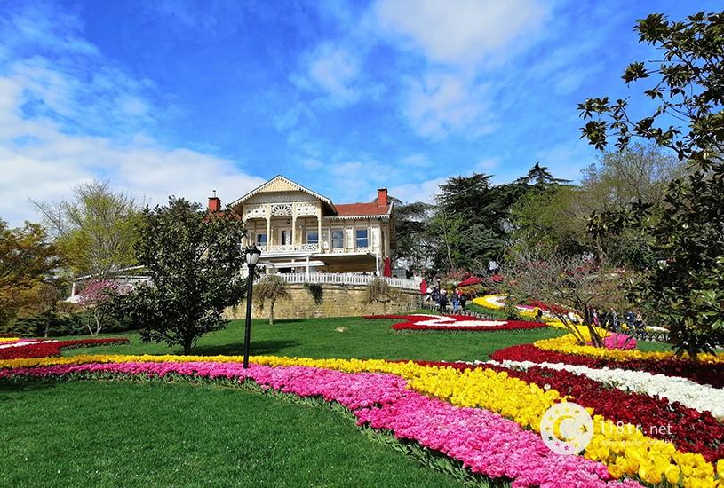 فستیوال گل لاله استانبول 4