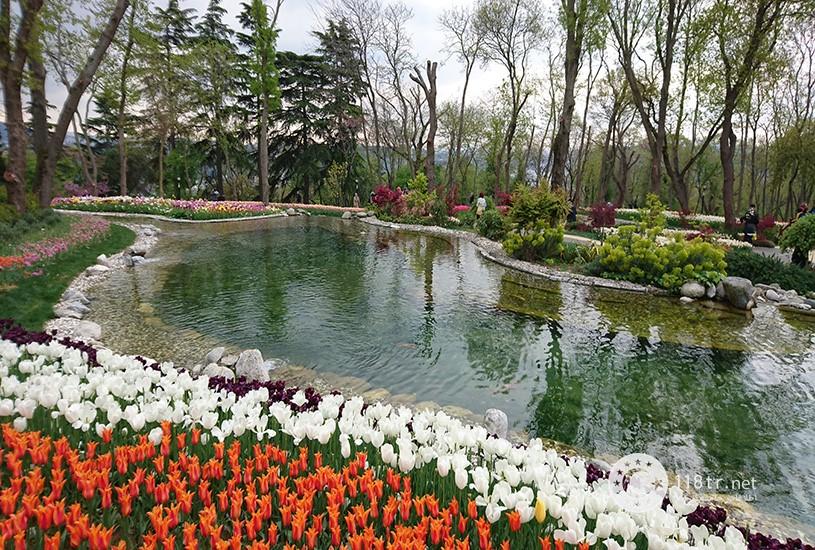 فستیوال گل لاله استانبول 3
