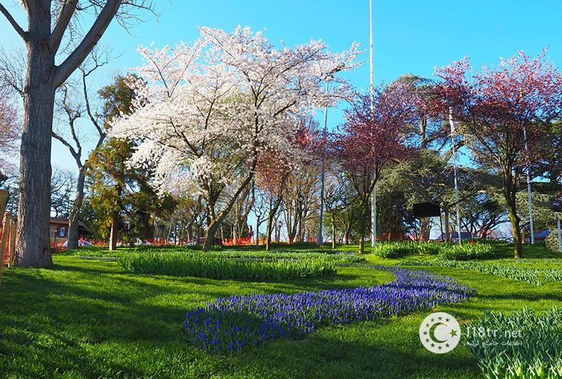 پارک امیرگان استانبول 7