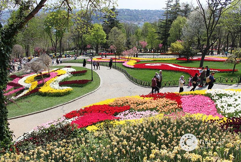 پارک امیرگان استانبول 6
