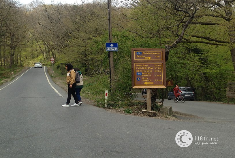 جنگل بلگراد استانبول 6