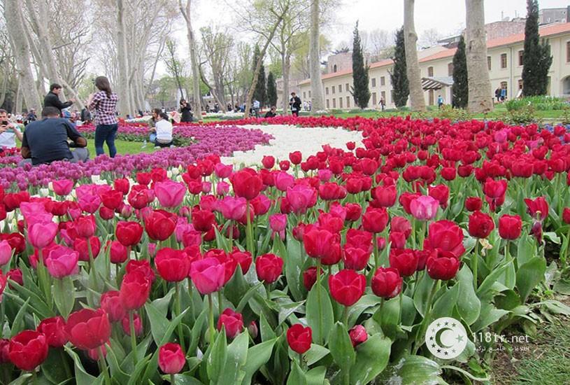 فستیوال گل لاله استانبول 1